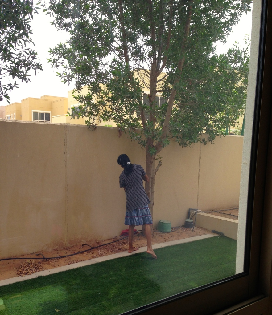 My housemaid sweeping my dirt in my unfinished landscaping