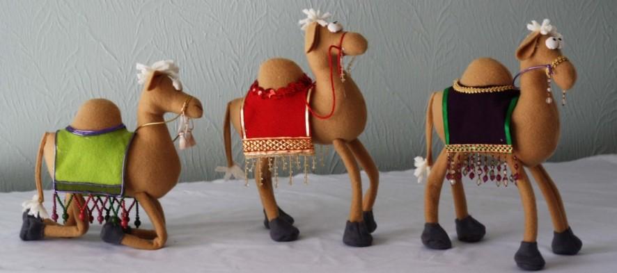 cropped-camel3.jpg